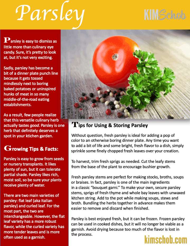 Parsley-15 Popular Culinary Herbs Easy Tips & Ideas | kimschob.com