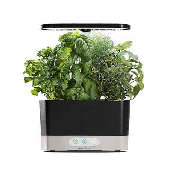 herb garden grow kitchen gift | kimschob.com
