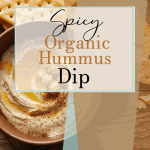 Spicy Organic Hummus Dip | kimschob.com